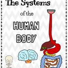 Gr 5: Human Body - Posters, Articles, Worksheets- French version sold separately