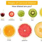A fruity picture of cervical dilation in labour! I thought it was a great tool for this time of the year!  Our bodies are so totally amazing! To think that the journey our bodies take to birth our babies! The cervix has to soften, thin and dilate over the course of our labour.