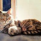 Tabby Cat Art Print   Etsy