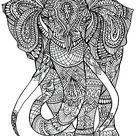 Animals - Coloring Pages for Adults