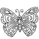 Lepkék-rovarok