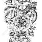 Hand drawn snake and peony isolated on white background. Pencil..