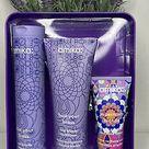 Amika Bust Your Brass Cool Blonde Shampoo 10 oz & Conditioner 8.45oz Duo Set !!  815151026102 | eBay