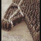 So Haben Soldaten Der Usa Ihre Ehrerbietung Fur Die Getoteten Pferde In 2020 Mit Bildern Kriegspferde Pferde Amerikanische Soldaten