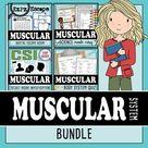 Muscular System Science Bundle