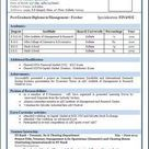 Sample of a Beautiful Resume format of MBA Fresher - Resume Formats