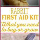 Rabbit First Aid Kit   Rabbit Health   Herbal Remedies for Rabbits