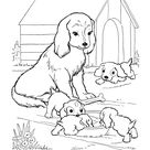 Dog Coloring Pages | Printable Mother dog watches her puppies coloring page