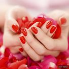 Hands with red nails style