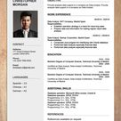 CV Resume Templates Examples Doc Word download