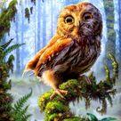 Forest Eagle Diamond Painting Kit - 50x50 cm / Round Diamons