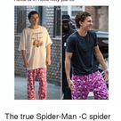 Tag Someones to Bless Them With Tom Holland in Hello Kitty Pants URVIVED the True Spider-Man -C Spider Kitty   Hello Meme on ME.ME