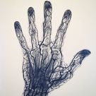 Blood vessels of the human hand  by DryadMedia on DeviantArt