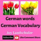German words ( German Vocabulary )#DeutschLernen   #joylandztravel #englischlernen