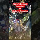 Shibuya Crossing – Tokyo Japan 😍SUBSCRIBE for more videos 🌸#shorts