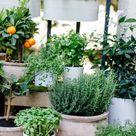 7 Tipps für eine gemütliche Terrasse oder einen gemütlichen Balkon