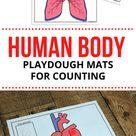 Human Body Play Dough Pages - Royal Baloo