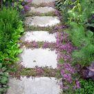 Diese 10 Bodendecker eignen sich perfekt für Ihre Gartenwege!