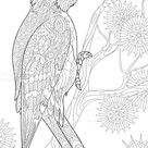Coloring page of woodpecker on tree branch among snowflakes. Freehand...