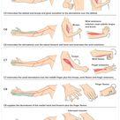 Cervical Examination