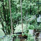 Holzkisten bepflanzen + DIY Rankgitter - Dreierlei Liebelei