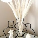 Silhouette Vases Customer Photo & Review