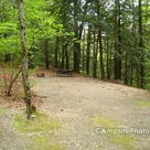 Mohawk Trail State Forest - Campsite Photos, Reservations & Info