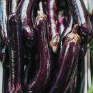 L'Aubergine: comment la planter, l'entretenir et la récolter