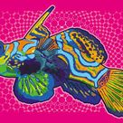 Original Animal New Media by Seven Seven Three Five   Illustration Art on Canvas   dragonet - Limited Edition 1 of 5