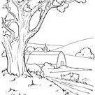 Farm Life Coloring Pages | Farm barn and cows Coloring Page and Kids Activity sheet