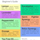 Beginner's Guide to Essential Oils - Live Simply