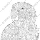 Coloring pages for adults. Macaw Parrot. Adult coloring pages. Animal coloring pages. Digital jpg-pdf coloring page. Instant download print.