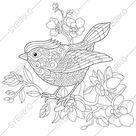Coloring pages for adults. Spring Bird. Adult coloring pages. | Etsy