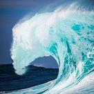The Blue Wave - Lawyers, Guns & Money