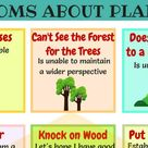 15+ Useful Trees, Plants and Flowers Idioms in English • 7ESL