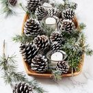 3-Minute DIY Snow Covered Pine Cones & Branches {3 Ways!}