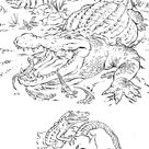 Best Picture Coloring Pages Realistic