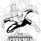 Notre livre de coloriage Spiderman GRATUIT 1 sur 4