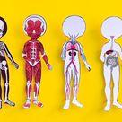 Anatomy Dress Up & Magnetic Printable Paper Dolls for Kids   Etsy
