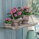 Wanddeko mit Pflanzen