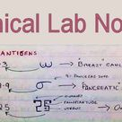 Clinical Lab Notes