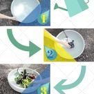 Balkon Ideen selber Machen: Ein Mini-Teich im Topf - Balkon, DIY - ZENIDEEN