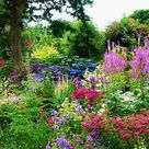 Visit 30 of the best gardens in Cornwall