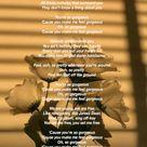 Gorgeous by X Ambassadors Lyrics