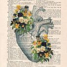 Heart Pansy Anatomy Botanical Flower vintage drawing book art gothic vintage art print wall art poster decor Halloween gift for her gothic