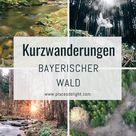 Kurze, traumhafte Wanderungen - Bayerischer Wald