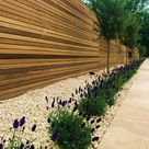 Hardwood slatted horizontal privacy screen trellis fence with lavender olives roses and cream travertine paving London - London Garden Blog