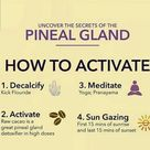Pineal Gland Activation in 7 Steps. Learn tricks for Pineal Gland Activation.