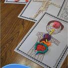 FREE Human Body Playdough Mats Printable Activity for Kids