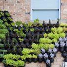 Vertikaler Garten   Greenbop